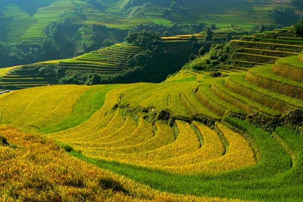 Muong Lo valley